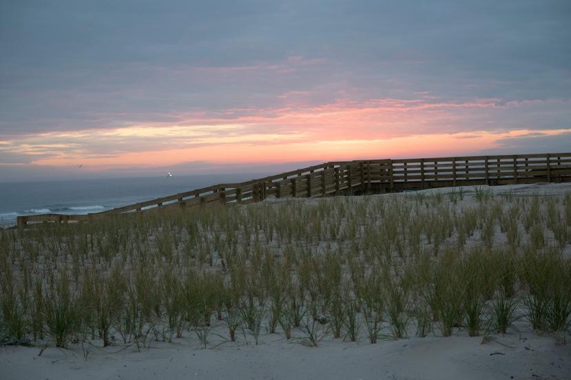Dune and dune walkDSC_7508