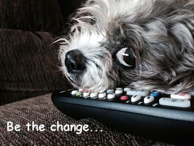 Bailey Be the change IMG_4464