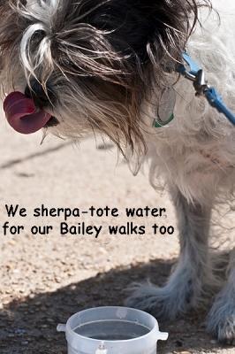 Bailey sherpa toteDSC_1703