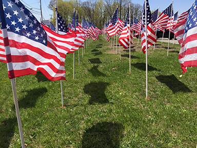 flags graves IMG_2058