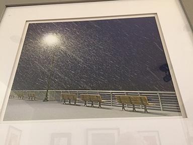 snow 4x5IMG_7511.jpg