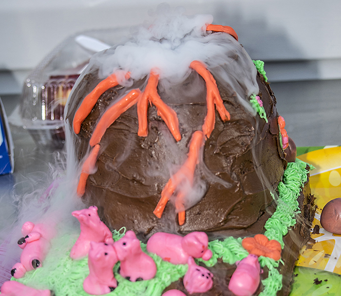 cake Pig volcano DSC_2519.jpg