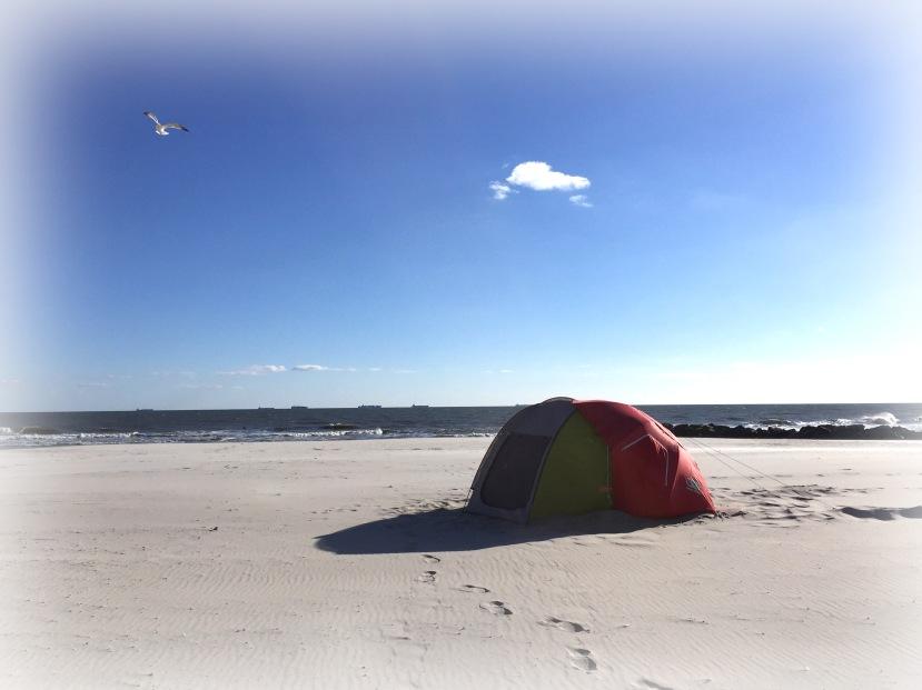 tent w gull IMG_8493 vign.jpg
