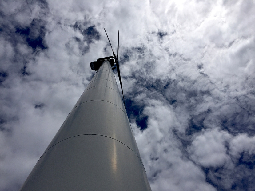 sunny turbine 2IMG_9244.jpg