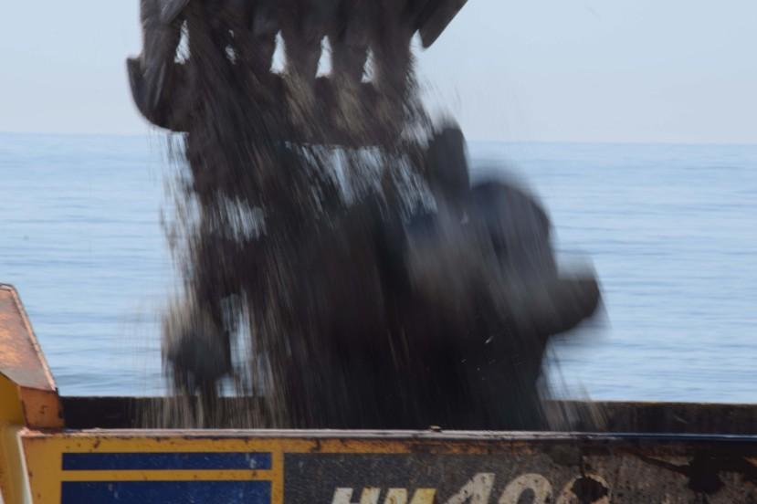 dumping on truck 2 DSC_9465.jpg
