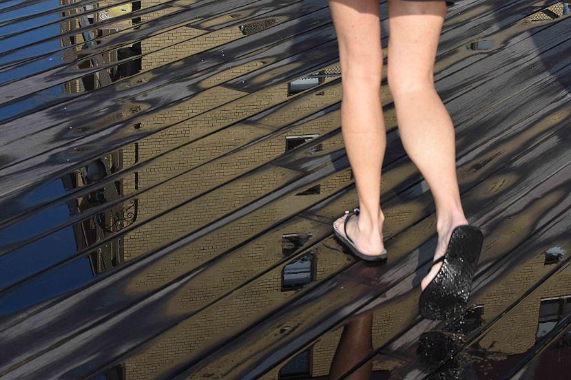 Legs DSC_5965.jpg