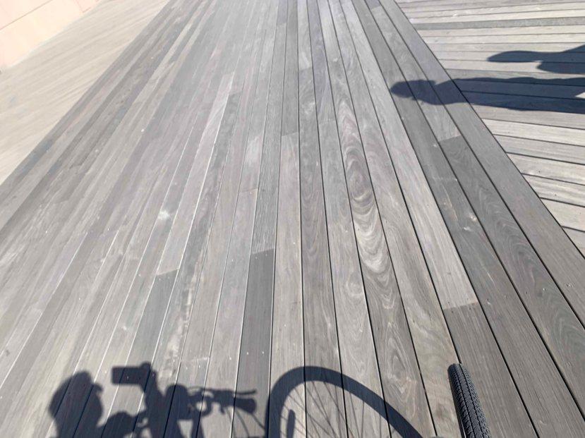 Biker Lee IMG_1660.jpg