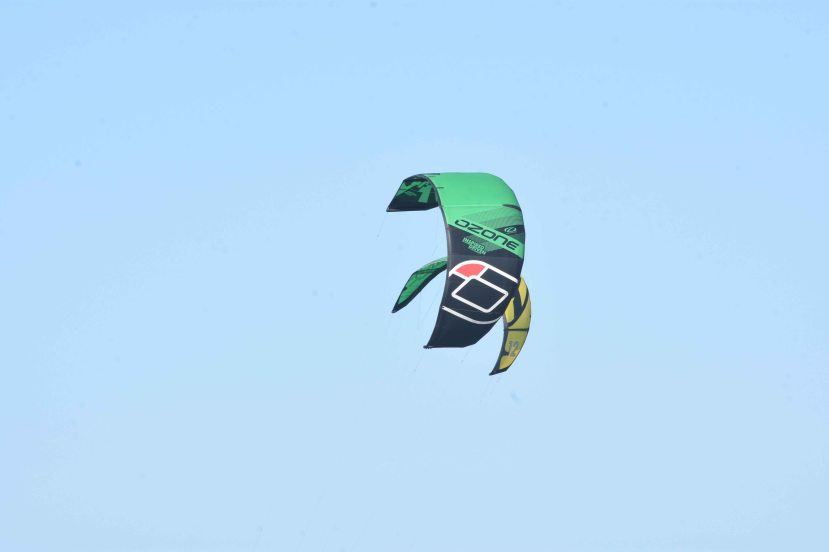 Kites join DSC_9047.jpg