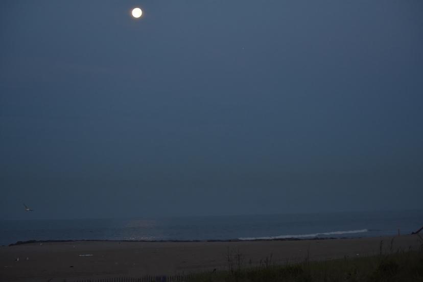 moon beach reflection